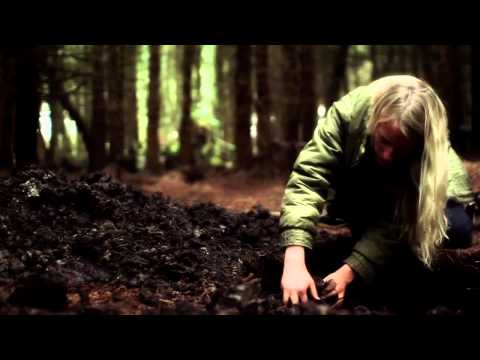 Message To Bears - Mountains (видео)