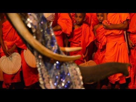 Sri Lanka: Buddhistischer Festzug Nawam Maha Perahera