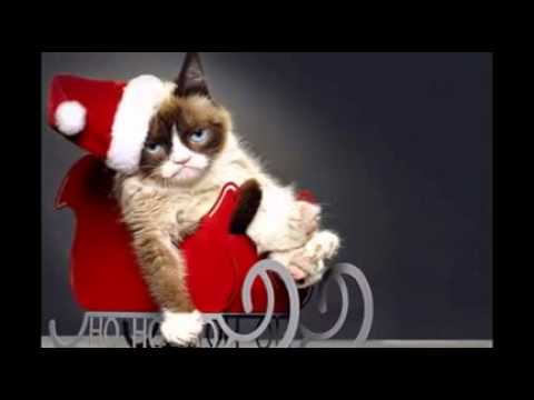 The 6 Best Things About 'Grumpy Cat's Worst Christmas Ever'