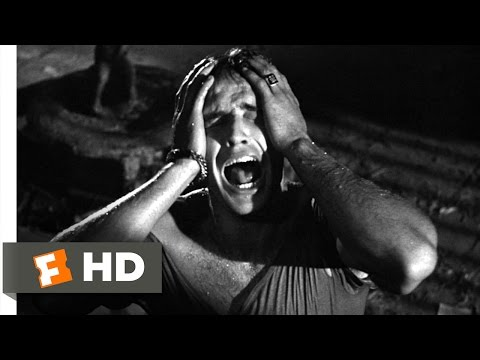 A Streetcar Named Desire (3/8) Movie CLIP - Stella! (1951) HD