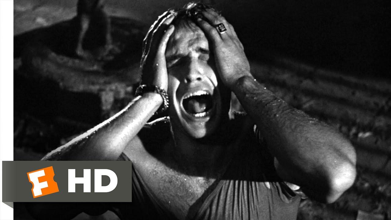 A Streetcar Named Desire (3/8) Movie CLIP - Stella! (1951) HD