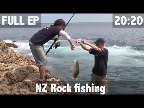 ULTIMATE FISHING – Land based fishing in New Zealand