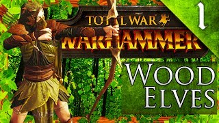 ► 500 LIKES? FOR KING IN THE WOODS! Total War Warhammer: Wood Elves Grand Campaign?► Support me on Patreon - https://www.patreon.com/Simpzy► Cheap Games G2A - https://www.g2a.com/r/simpzy► Twitter - https://twitter.com/SimpzyTotalWar► Facebook - https://www.facebook.com/SimpzyTotalWar/► Steam Group - http://steamcommunity.com/groups/Simpzy► Instagram - http://instagram.com/simpzanator► Twitch - http://www.twitch.tv/simpzanator► Google+ - https://plus.google.com/+Simpzanator ► THE MODS! - http://steamcommunity.com/sharedfiles/filedetails/?id=892941181- http://steamcommunity.com/sharedfiles/filedetails/?id=944767629- http://steamcommunity.com/sharedfiles/filedetails/?id=687689947- http://steamcommunity.com/sharedfiles/filedetails/?id=700512220- http://steamcommunity.com/sharedfiles/filedetails/?id=820554756- http://steamcommunity.com/sharedfiles/filedetails/?id=834440120- http://steamcommunity.com/sharedfiles/filedetails/?id=715572242- http://steamcommunity.com/sharedfiles/filedetails/?id=700659207► Thanks for watching the video! If you enjoyed it and want to see more please subscribe! I spend a lot of my time making these videos and uploading so please support my channel by clicking the like button and leaving a comment! Using Ad-blocker? Support my channel by turning it off!I appreciate all the support!- Simpzy