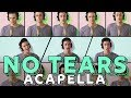 Download Video Ariana Grande - no tears left to cry [ACAPELLA COVER]