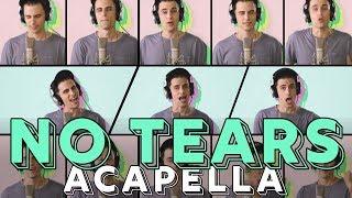 Download Lagu Ariana Grande - no tears left to cry [ACAPELLA COVER] Mp3