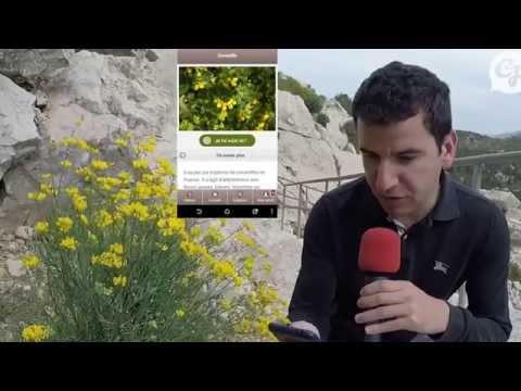 Video of Ecobalade