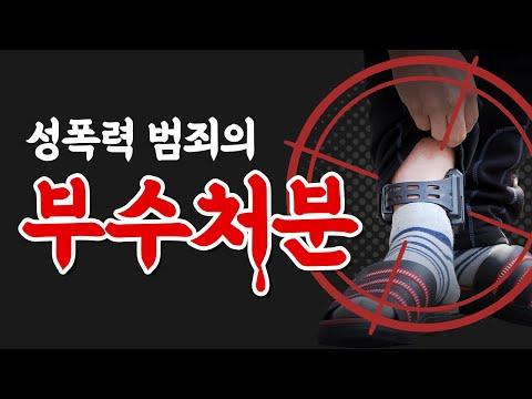 성폭력 범죄의 부수처분