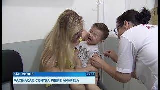 São Roque registra morte de macaco por febre amarela e vacina a população contra a doença
