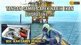 Video The spot here is actually Fishing Paradise, Fish Box is full MP3, 3GP, MP4, WEBM, AVI, FLV Januari 2019