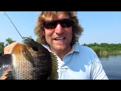 Fishing Spawning Bluegill on Beds