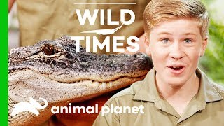 Kangaroos and Alligators, Oh My! | Wild Times by Animal Planet