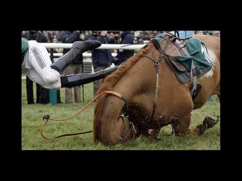 •Official• two Horses die at grand national race 2012
