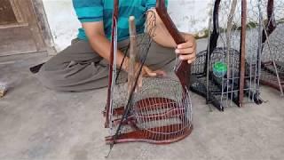 Video Sangkar Jebak Perkutut & Derkuku - Untuk Memikat Burung Perkutut dan Derkuku Liar di Hutan MP3, 3GP, MP4, WEBM, AVI, FLV Juli 2019