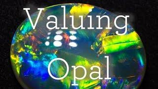 Valuing Opal