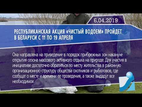 Новостная лента Телеканала Интекс 06.04.19.