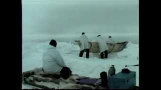 Inupiat people continue to rely heavily on subsistence hunting and fishing, including whaling. The capture of a whale benefits each member of a community, ...