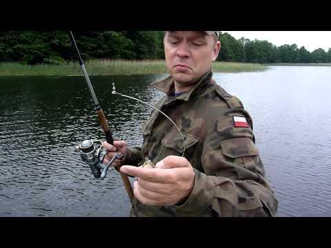 Wersminia 11.06.2011 - łowienie szczupaków