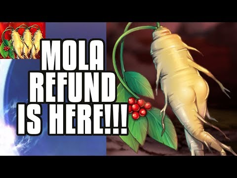 【Epic Seven】Molagora Refund & Guild War Season Starts!