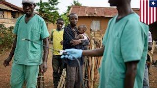 西アフリカでエボラ出血熱拡大。日本に広がる可能性は低い(ニュース)
