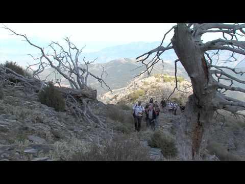 Desafío vertical. Subida al pico Torrecilla en Sierra de las NIeves