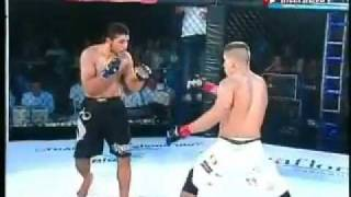 Best Knockout ever in MMA