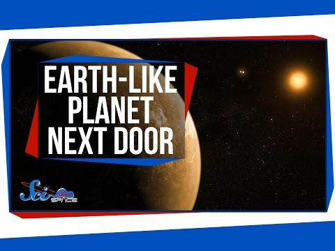 Breaking News: There's an Earth-like Planet Next Door