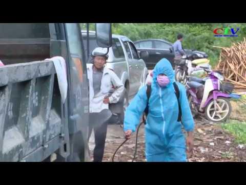 Dịch tả lợn Châu Phi bùng phát tại 6 xã, thị trấn