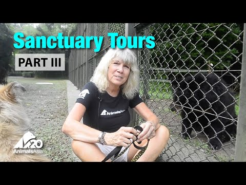 Sanctuary tour part III