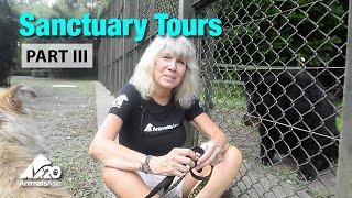 Sanctuary tour part III