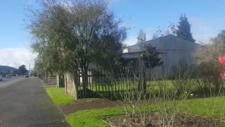 Taumarunui New Zealand  city pictures gallery : Taumarunui Maori Marae, New Zealand, June 2016