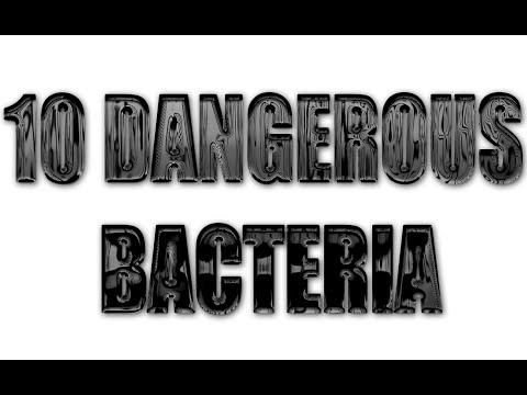 10 Dangerous Bacteria To Avoid
