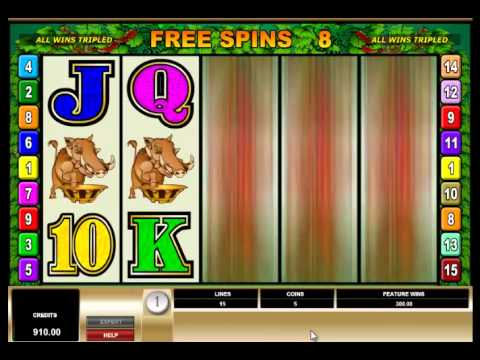 Slots win at 75 Dollar Spins on Bush Telegraph Pokie