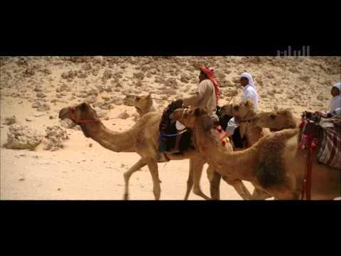 أحفاد الصحراء