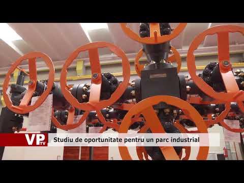 Studiu de oportunitate pentru un parc industrial