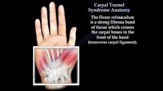 Carpal Tunnel Syndrome ,anatomy ,animation - Everything You Need To Know - Dr. Nabil Ebraheim