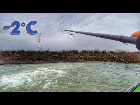 Pescuit pe ploaie si lapovita in IANUARIE pe ARGES!!