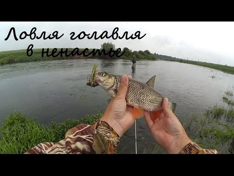 ловим рыбу получи реке нерль тверская