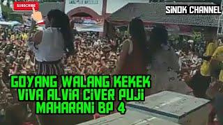 heboh puji bp4 goyang walang kekek live btn pekalongan