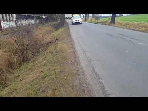 Wideo1: Niebezpiecznie przy drodze Grabonog - Podrzecze