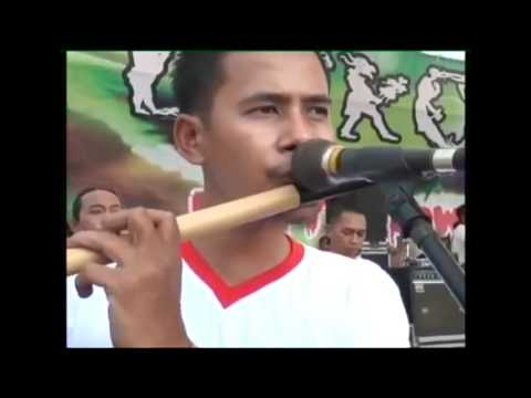 Video NEW PALAPA - SNP (saudara new palapa) All artis download in MP3, 3GP, MP4, WEBM, AVI, FLV January 2017