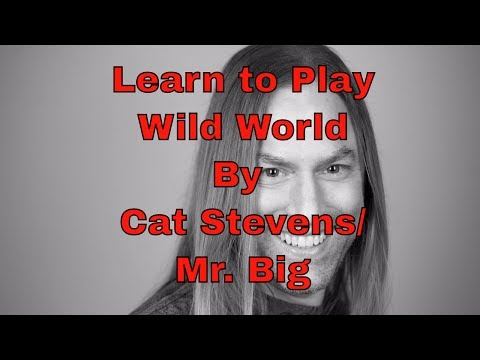 Learn How To Play Wild World By Cat Stevens/Mr. Big - Steve Stine Guitar Lesson