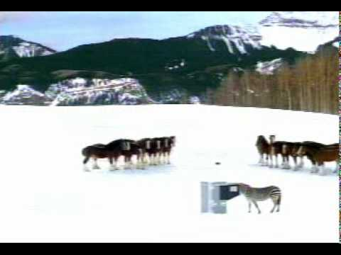 Banned Commercials - Budweiser 2003 Super Bowl.mpeg