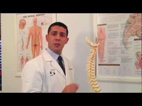Rashad Trabulsi on the Human Spine