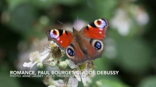 Romance, Paul Bourget/Claude Debussy