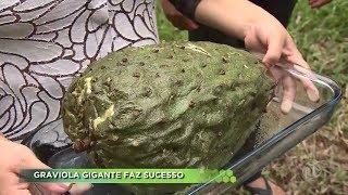 Agro Record na íntegra - 03/03/2019 Bloco 2