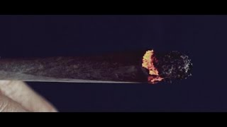 Taipan - Cendrier (Clip officiel) - YouTube