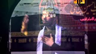 Khudaya Mujhe Imam E Zaman Ka Nasir, Ali Safdar 2013-14