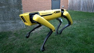 Новый робот-пёс от Boston Dynamics