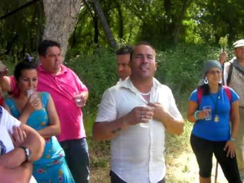 manguara en el camino 2010