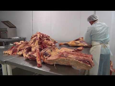 О ситуациях с поставками животноводческой  продукции, для нужд дошкольных и школьных учреждений Ростовской области